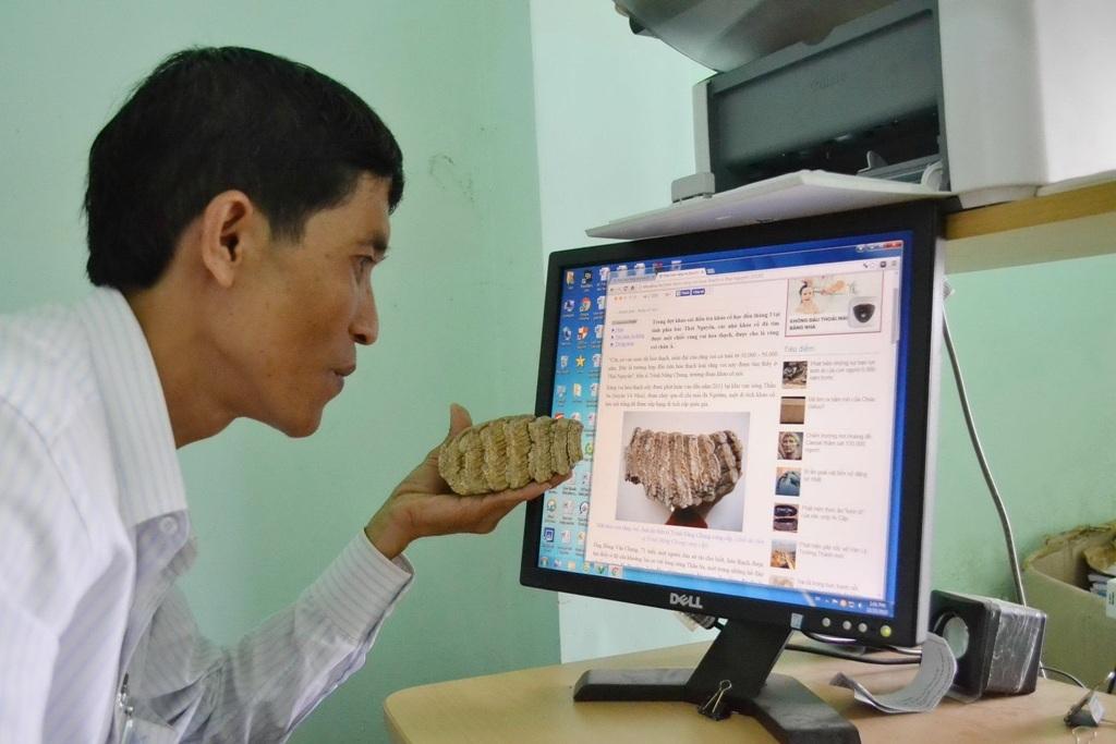 Theo ông Triều tìm hiểu và căn cứ vào công bố của TS Trình Năng Chung (Khoa Khảo cổ học, Học viện Khoa học xã hội) về răng voi hóa thạch được phát hiện tại tỉnh Thái Nguyên vào 2011, thì vật thể lạ mà ông đang sở hữu mức độ giống nhau đến từng xăng ti mét.