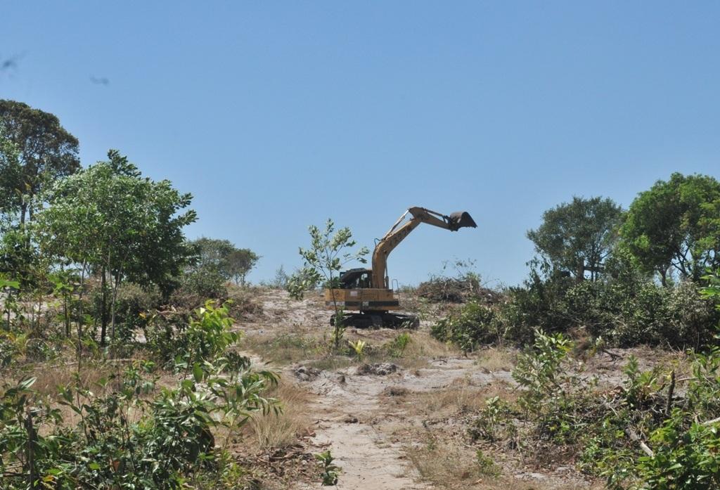 Trong khoản thời gian từ 26/01/2016 đến tháng 3/2016, Công ty TNHH Ngôi Sao cho người và máy móc đến san lấp và đốn hạ các cây trồng trên mảnh đất 80.000m2, mặc dù Tòa phúc thẩm đang thụ lý