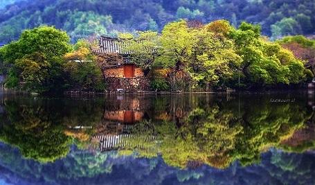 Nao lòng với cảnh thiên nhiên tuyệt đẹp như soi bóng nước gương hồ ở Hàn Quốc - 10