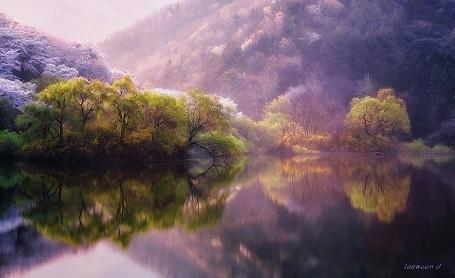 Nao lòng với cảnh thiên nhiên tuyệt đẹp như soi bóng nước gương hồ ở Hàn Quốc - 3