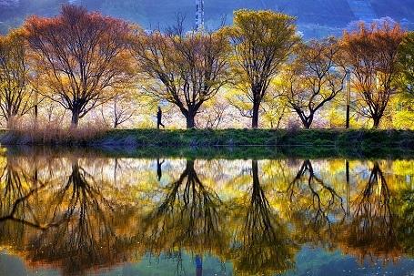 Nao lòng với cảnh thiên nhiên tuyệt đẹp như soi bóng nước gương hồ ở Hàn Quốc - 6
