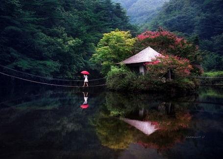 Nao lòng với cảnh thiên nhiên tuyệt đẹp như soi bóng nước gương hồ ở Hàn Quốc - 8