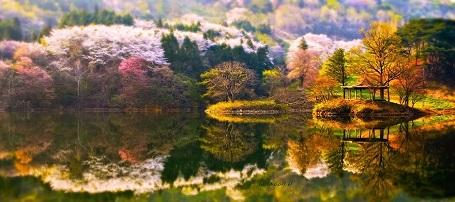 Nao lòng với cảnh thiên nhiên tuyệt đẹp như soi bóng nước gương hồ ở Hàn Quốc - 9