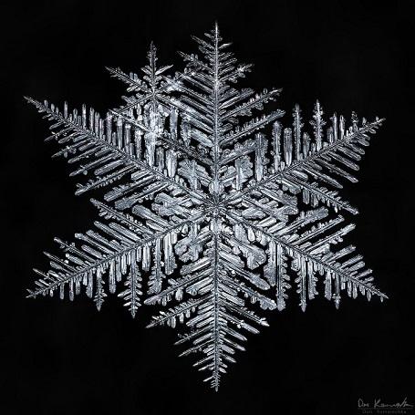 """Nhiếp ảnh gia mất 5 năm để """"săn"""" bức ảnh đẹp về tinh thể tuyết - 3"""