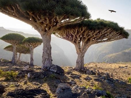 Những địa danh trên Trái Đất đẹp như thuộc về một thế giới khác - 8