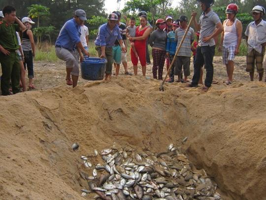 Người dân bị thiệt hại do thảm họa cá chết sẽ được hỗ trợ chuyển đổi ngành nghề