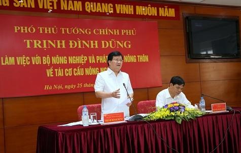 Phó Thủ tướng Trịnh Đình Dũng phát biểu tại buổi làm việc. Ảnh: VGP
