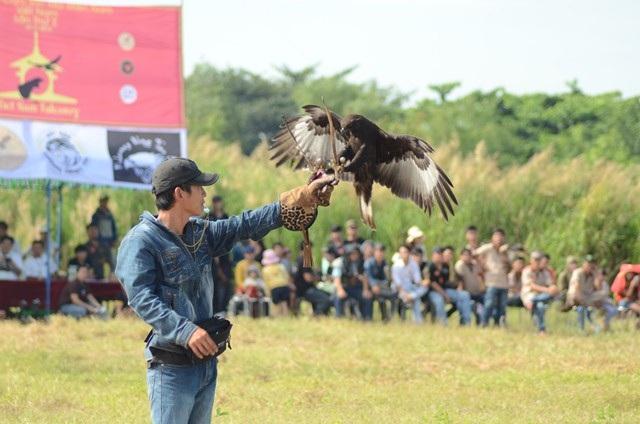 ...thời gian bay từ vị trí xuất phát đến tay của chủ nhân sẽ quyết định thành tích của chú chim.