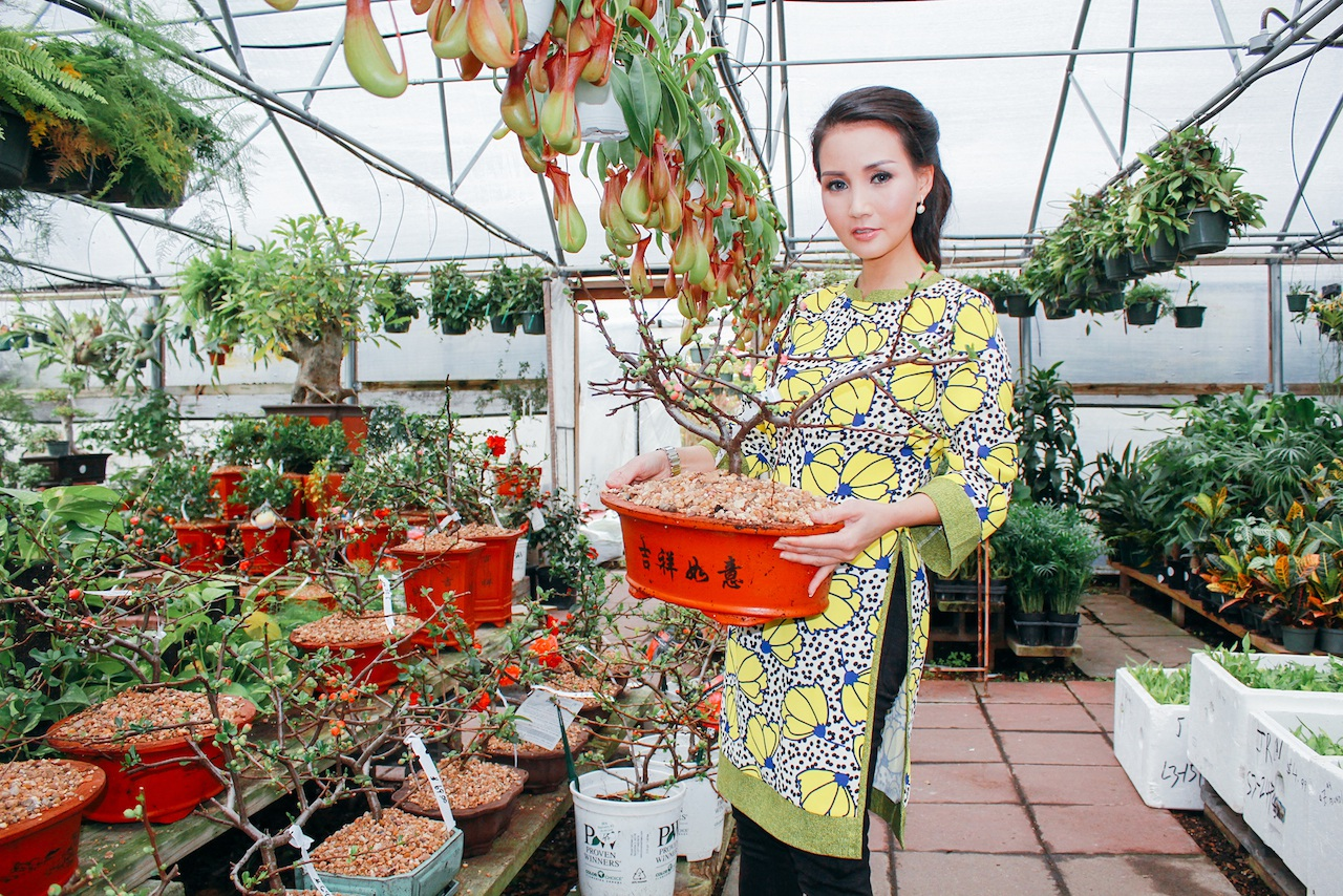 Trong những ngày này ở Việt Nam, nhà nhà, người người đang tất bật chuẩn bị sắm sửa cho Tết cổ truyền đang tới gần thì ở bên kia bán cầu, Hoa hậu Quý bà châu Á tại Mỹ Sương Đặng cùng những bà con Việt kiều cũng rộn ràng chuẩn bị đón Tết.