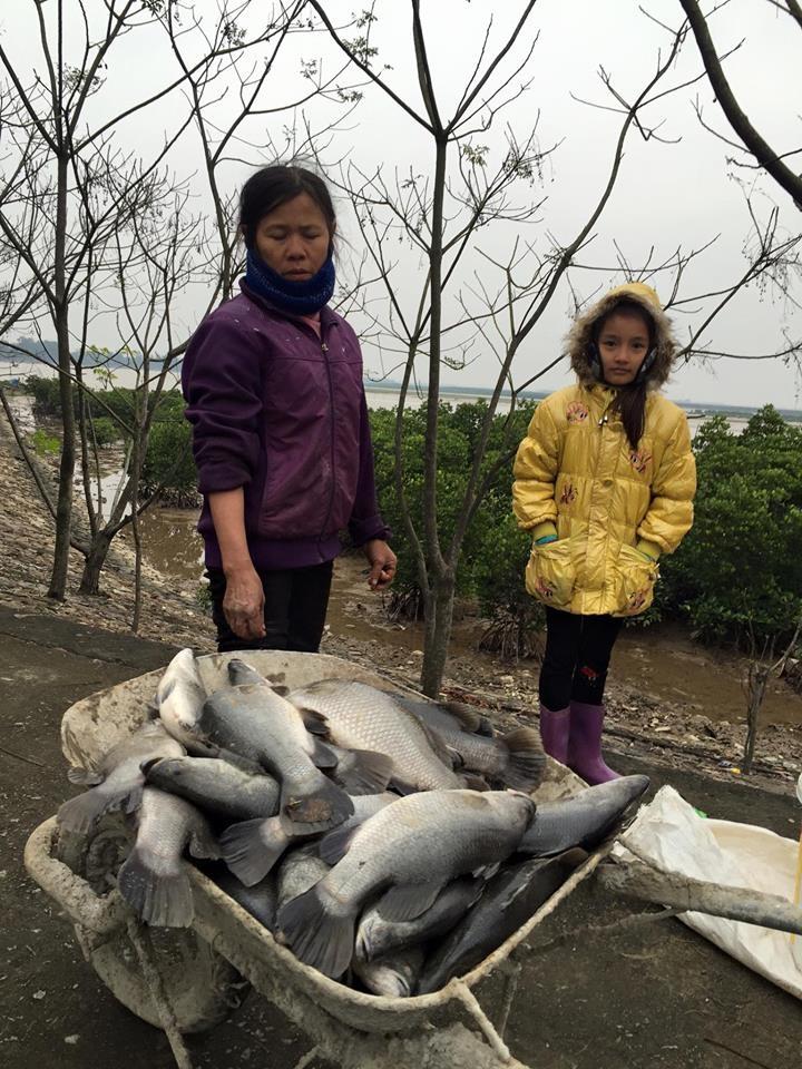 Nuôi cá lồng là nguồn thu nhập chính của hàng chục nông dân ở địa bàn Hà Tĩnh, cá chết hàng chục nông dân nơi đây mất tết
