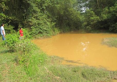 Người dân xã Cẩm Mỹ bức xúc cho rằng dự án chăn nuôi bò của Công ty cổ phần Chăn nuôi Bình Hà đang gây ô nhiễm nguồn nước tại địa phương.