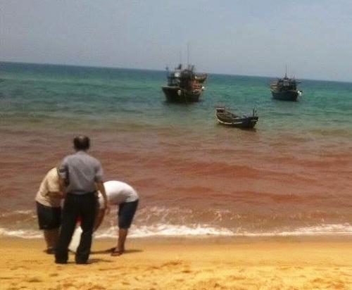 Các chuyên gia quốc tế lấy mẫu nước biển đổi màu để tiến hành thí nghiệm.