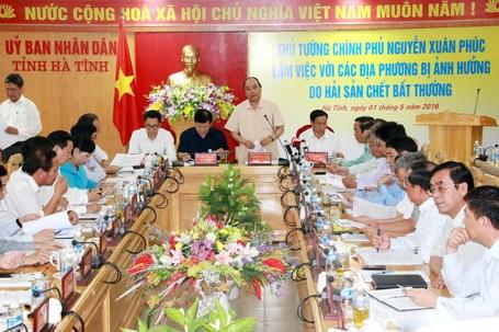 Thủ tướng Chính phủ Nguyễn Xuân Phúc giao Bộ Tài nguyên và Môi trường và UBND tỉnh Hà Tĩnh triển khai ngay trạm quan trắc tự động từ điểm xả thải của nhà máy Formosa đến trạm quan trắc của Sở TNMT Hà Tĩnh.
