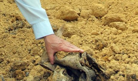Việc san lấp vội vàng khiến các bao bì đựng chất thải vẫn lộ ra trên mặt đất.