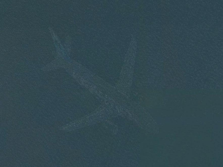 HÌnh ảnh máy bay chở khách nằm dưới đáy hồ Harriet ở Mỹ do Google Máp chụp lại. (Ảnh: Independent)