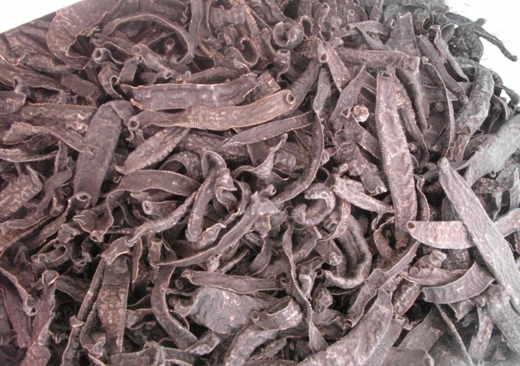 72 kg đỉa đã sấy khô bị ngăn chặn trước khi tràn về Việt Nam