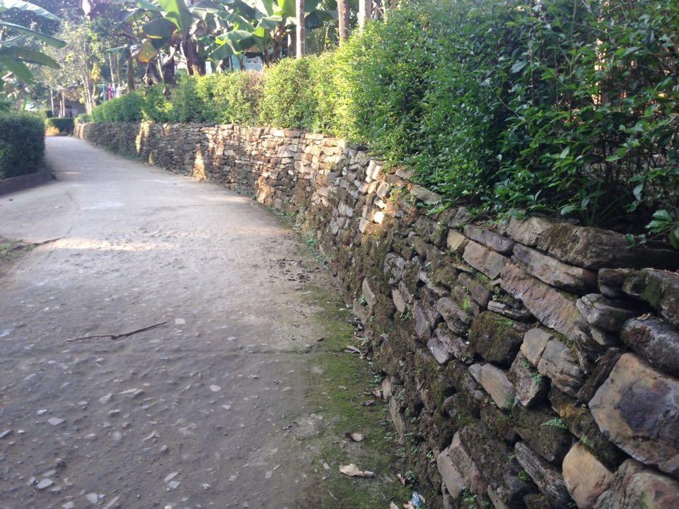 Hàng rào đá ở Tiên Phước - Quảng Nam xuất hiện ở đường làng ngõ xóm, ruộng, nương, vườn tược... tạo nên nét đẹp riêng của miền quê thanh bình.
