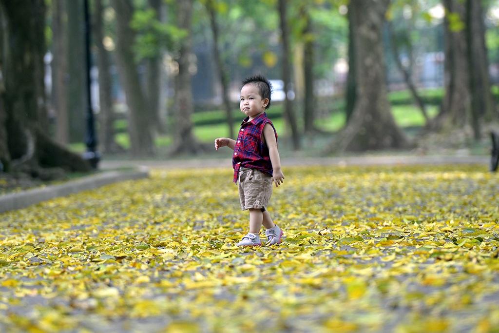 Bé gái 2 tuổi thích thú khi những âm thanh từ lá khô xào xạc được tạo nên sau mỗi bước đi của mình.
