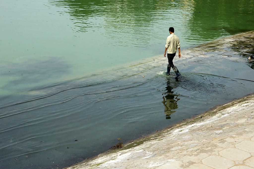 Tuy nhiên, trong những ngày đầu tháng 5 vừa qua, khi thời tiết bắt đầu nắng nóng, nhân dân sống trong khu vực quanh hồ Ngọc Khánh phản ánh nước hồ ô nhiễm, mùi hôi thối bốc lên nồng nặc, nhất là vào buổi chiều.