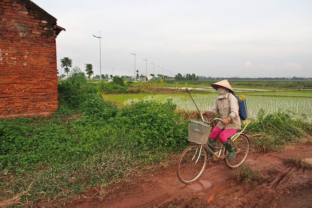Bà con nông dân vẫn cày cấy trên những cánh đồng hai bên con đường mới này.