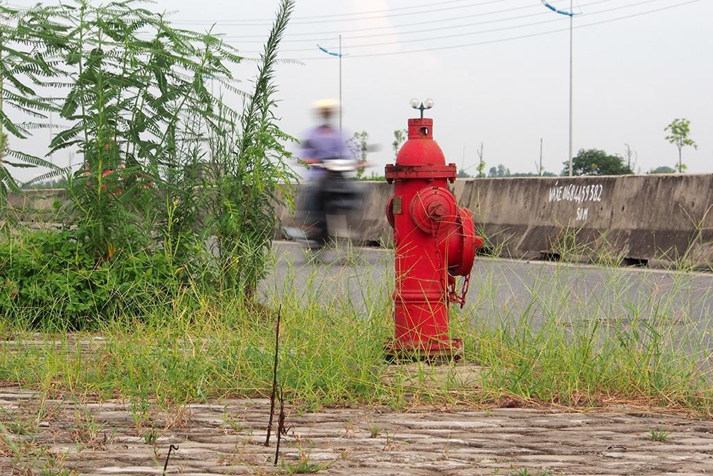 Họng nước cứu hỏa bên đường, cỏ dại mọc vây xung quanh. Lý do cỏ mọc nhiều trên vỉa hè một số đoạn cũng tương tự như ở đường dự kiến đặt tên là Trường Sa.
