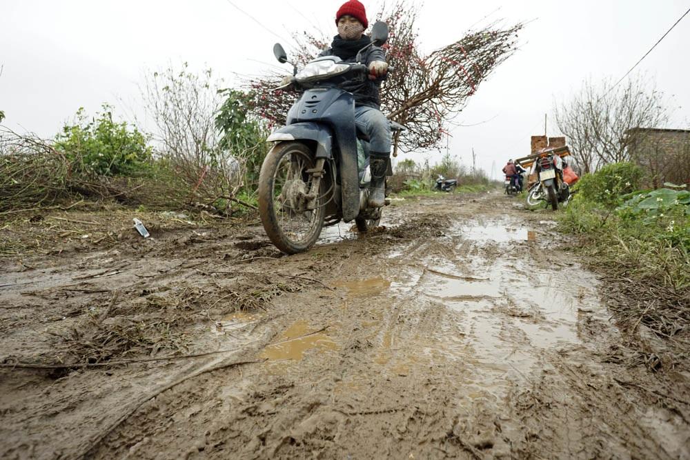 Nhiều người dân vận chuyển đào đã bị ngã bởi những đoạn đường đất nhão nhoét, trơn trượt.