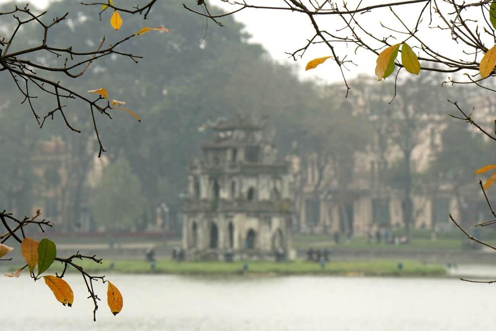 Những chiếc lá vàng lộc vừng bên bờ hồ Hoàn Kiếm.