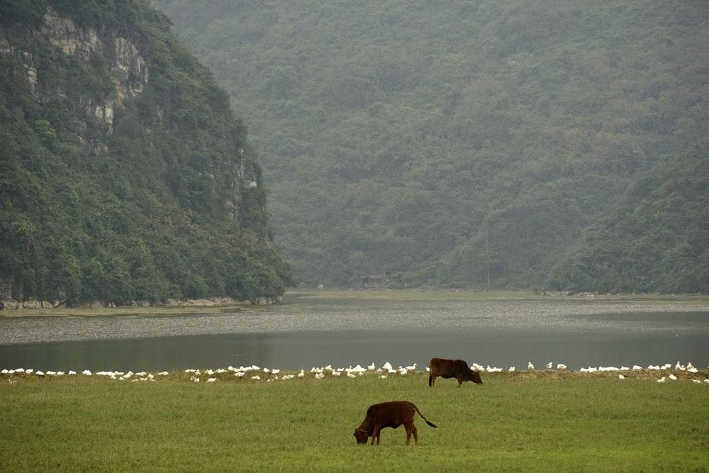 Vào khoảng những năm 60 - 70 của thế kỉ trước, một con đê được xây đắp để giữ nước làm thủy lợi đã hình thành nên hồ Tuy Lai rộng lớn như ngày nay với tổng diện tích mặt nước vào khoảng 250 ha và có 150 ha rừng tự nhiên.