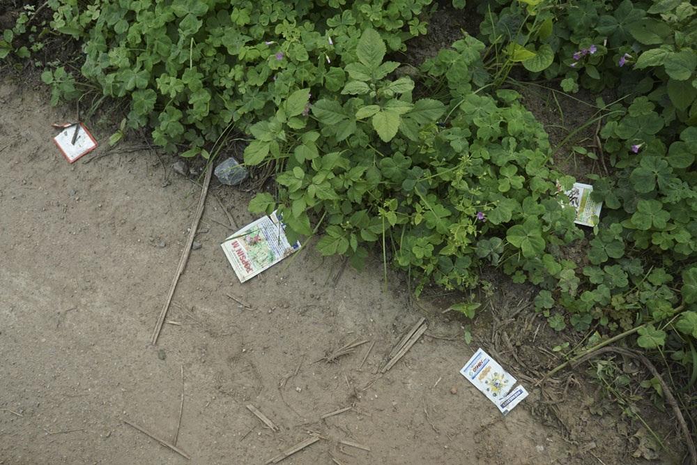 La liệt đủ loại dù đây là khu trồng rau sạch của phường Thúy Lĩnh với rất nhiều các qui chế và cam kết về việc sử dụng thuốc BVTV đúng cách.
