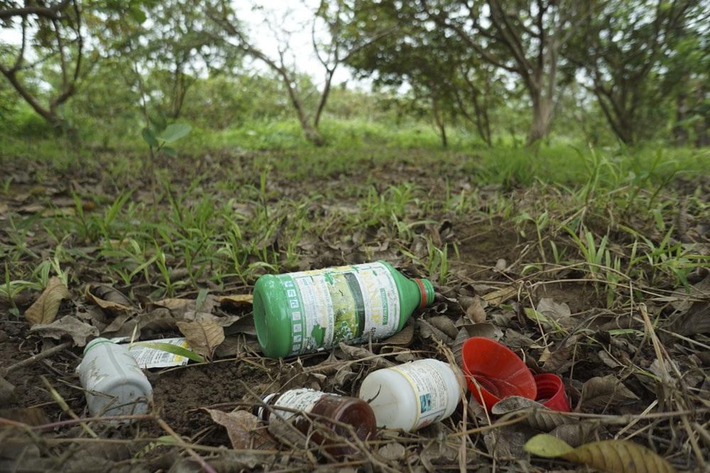 Thế nhưng việc vứt bừa bãi các loại bao bì độc hại này rất phổ biến ngay trong vườn, đồng ruộng, trên lối đi, nguồn nước.