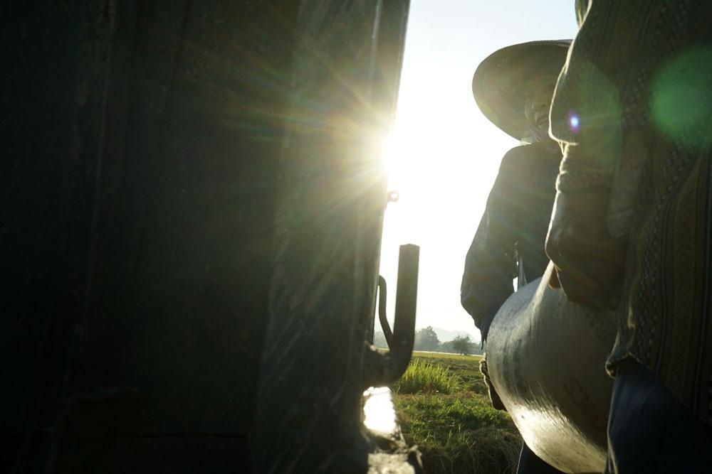 Mùa vụ đang trong thời điểm nắng nóng gay gắt nhưng người nông dân đã bớt dần cực nhọc.