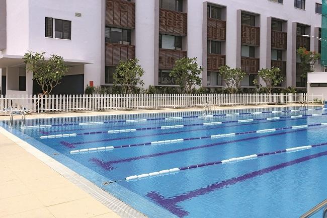 Hồ bơi cho học sinh