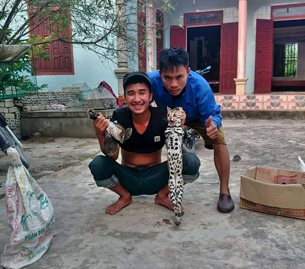 Phẫn nộ với hình ảnh thanh niên khoe cảnh giết hàng loạt khỉ trên Facebook - 5