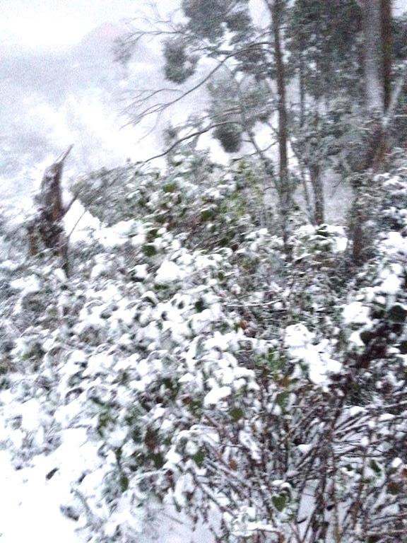 Tuyết phủ trắng miền Tây xứ Nghệ - 2