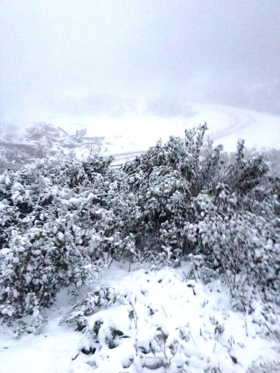 Tuyết phủ trắng miền Tây xứ Nghệ - 8