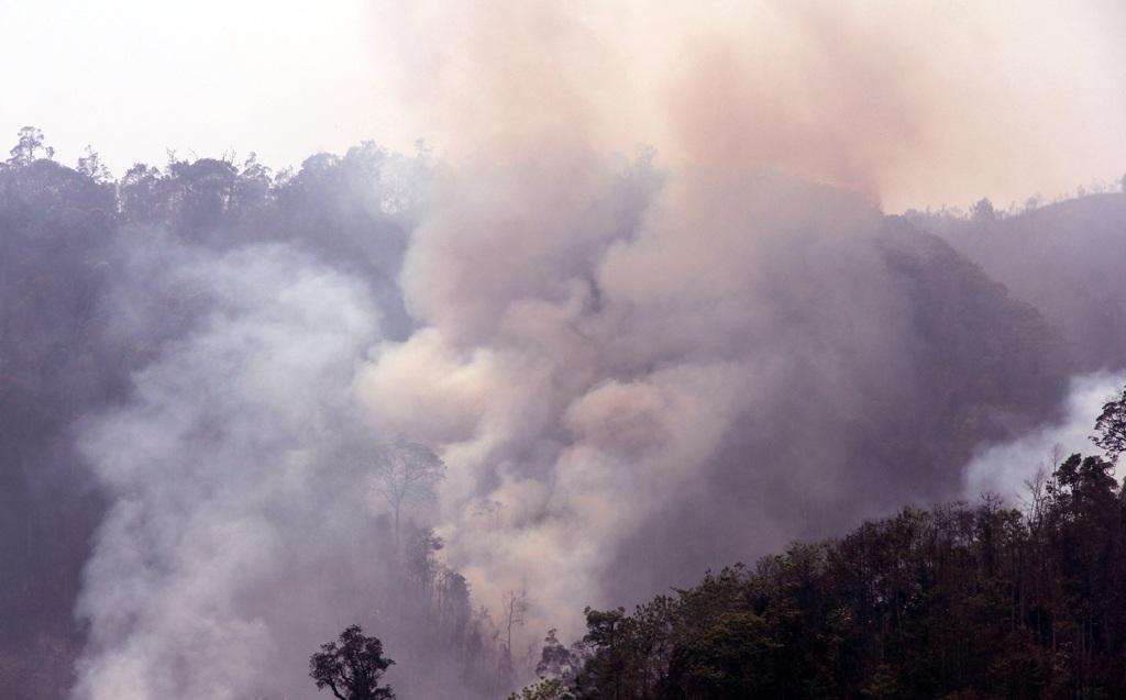 Những cột khói bốc cao cả chục mét, bao trùm cả một khu vực.