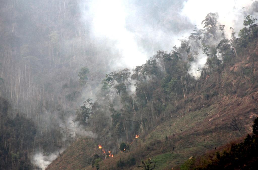 Gần ngàn người dập đám cháy rừng kéo dài suốt 4 ngày - 3