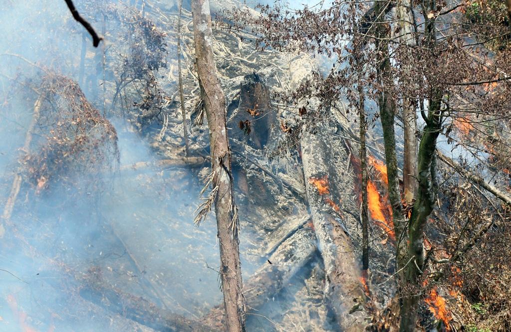 Gần ngàn người dập đám cháy rừng kéo dài suốt 4 ngày - 5