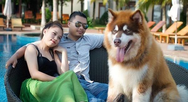 Chú chó A Ngưu và ông bà chủ trẻ