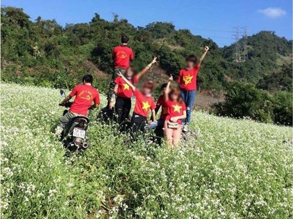 Hình ảnh phượt thủ chạy xe và giẫm đạp trên cánh đồng hoa tam giác mạch gây phẫn nộ trong cộng đồng những người đam mê du lịch