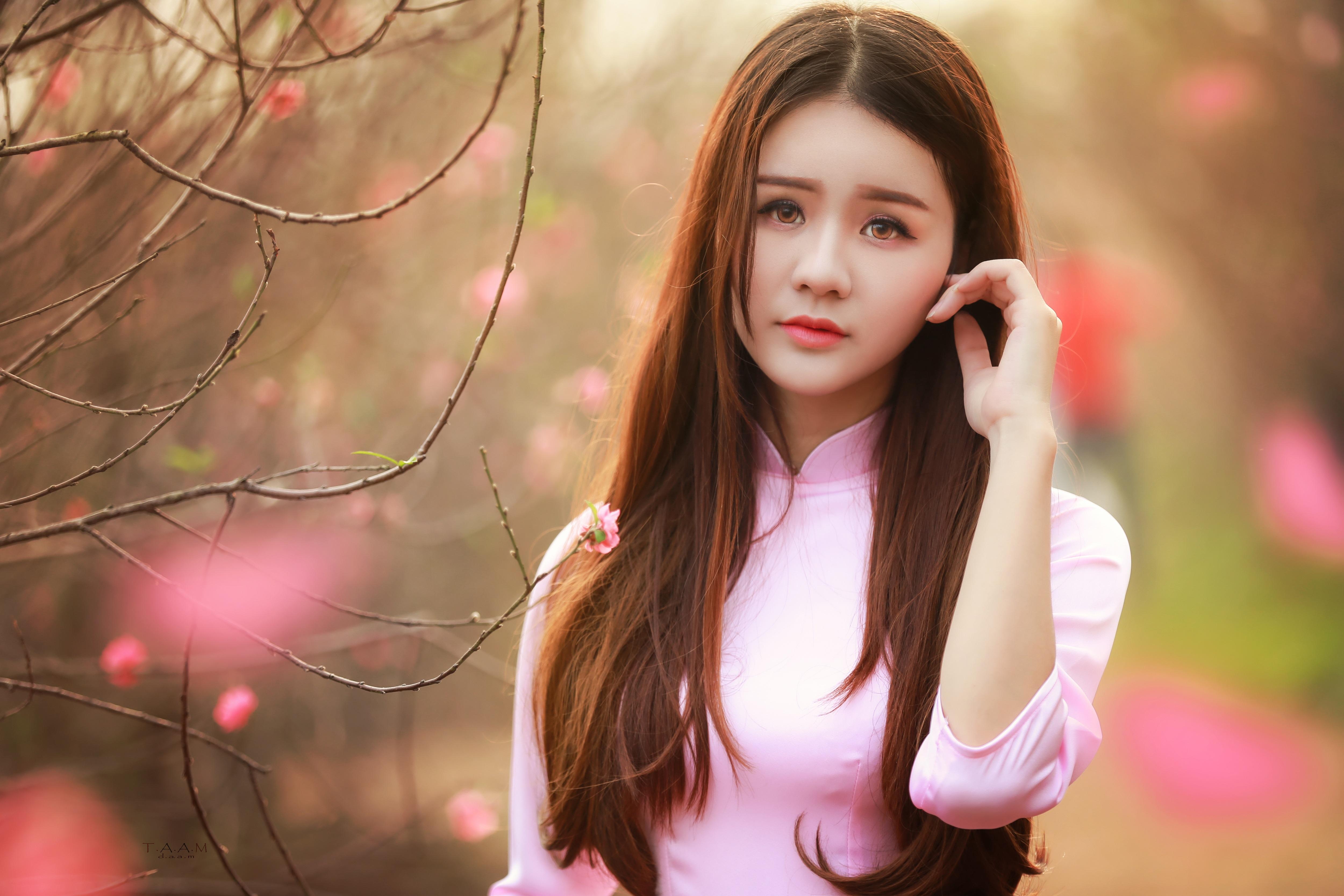 Thiếu nữ mộng mơ giữa vườn đào Nhật Tân - 1