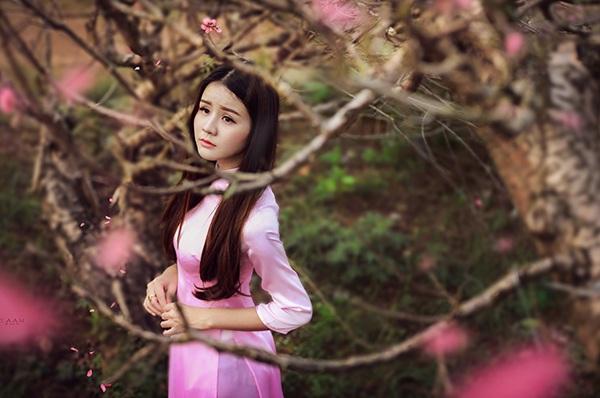 Thiếu nữ mộng mơ giữa vườn đào Nhật Tân - 5
