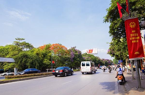 Hoa bằng lăng hai bên đường Kim Mã (Hà Nội)