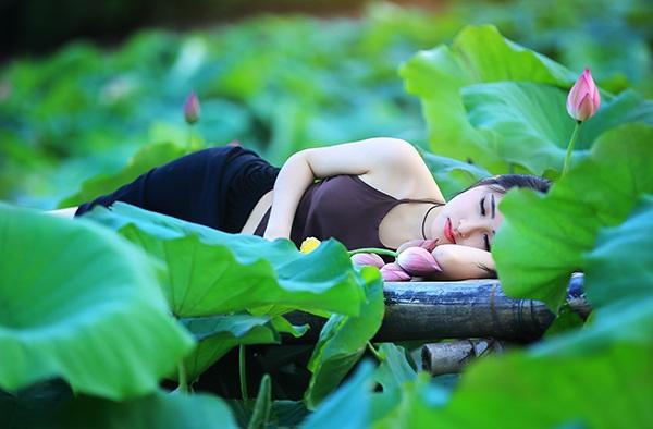 Trong các loài hoa nổi tiếng ở Hà Nội, Hồng yêu thích hoa sen nhất.
