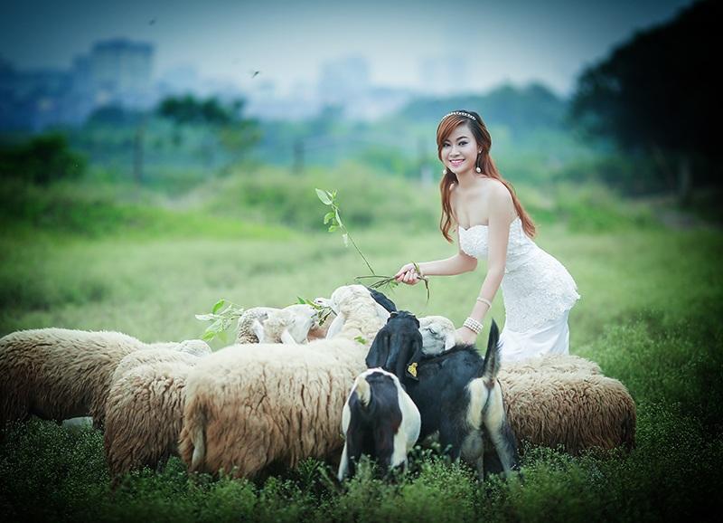 Ngô Anh My - SV Cao Đẳng Du Lịch Hà Nội