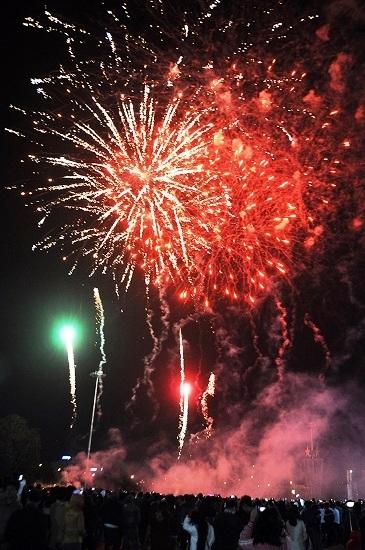 """Pháo """"nở hoa"""" trên bầu trời chào năm mới Bính Thân - 30"""