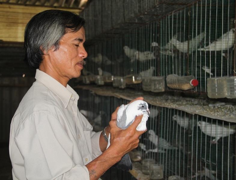 """Nông dân Huỳnh Văn Lam (53 tuổi, ở tổ 2, khu vực 3, phường Nhơn Phú, TP Quy Nhơn), đạt giải Nhì với giải pháp """"Cải tiến kỹ thuật nuôi chim Bồ Câu Pháp lấy thịt đạt hiệu quả kinh tế cao"""""""