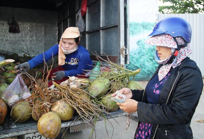"""Bình Định: Nắng gắt, giá dừa trái đắt gấp 3 lần vẫn """"cháy"""" hàng - 6"""