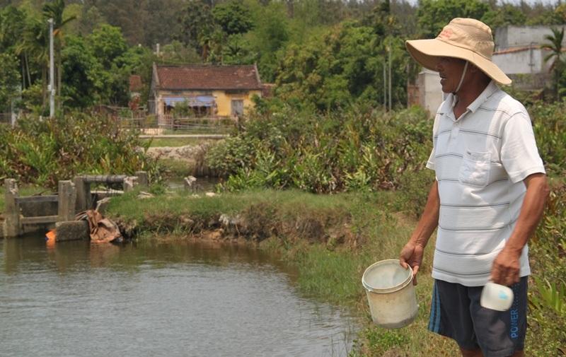 Người nuôi tôm bên hồ tôm vừa thả được hơn 20 ngày, thấp thỏm lo nước mặn sẽ khiến tôm chết.