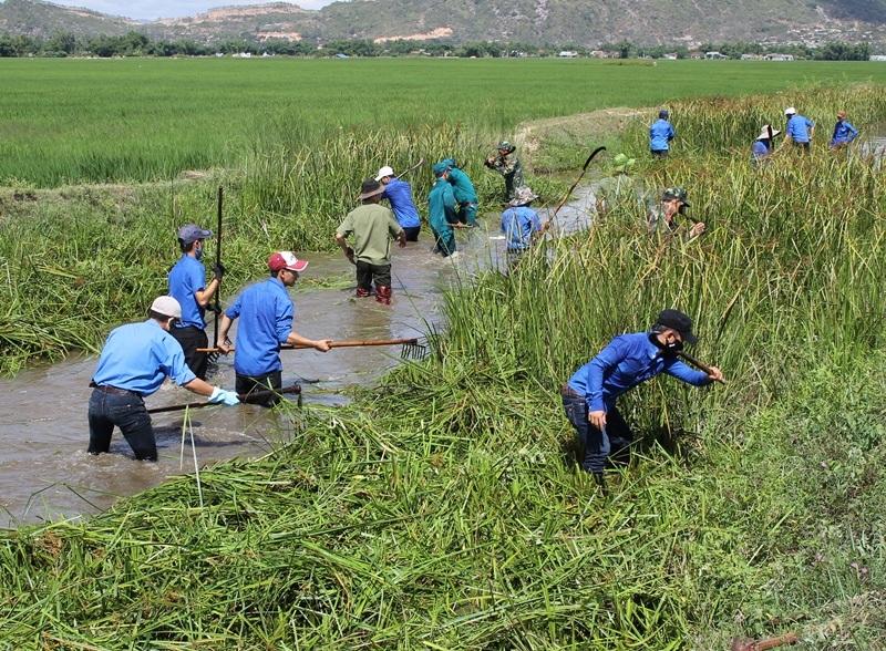Ngay sau lễ phát động, các ĐVTN hăng hái ra quân nạo vét kênh mương, khơi thông dòng chảy tại huyện Tuy Phước